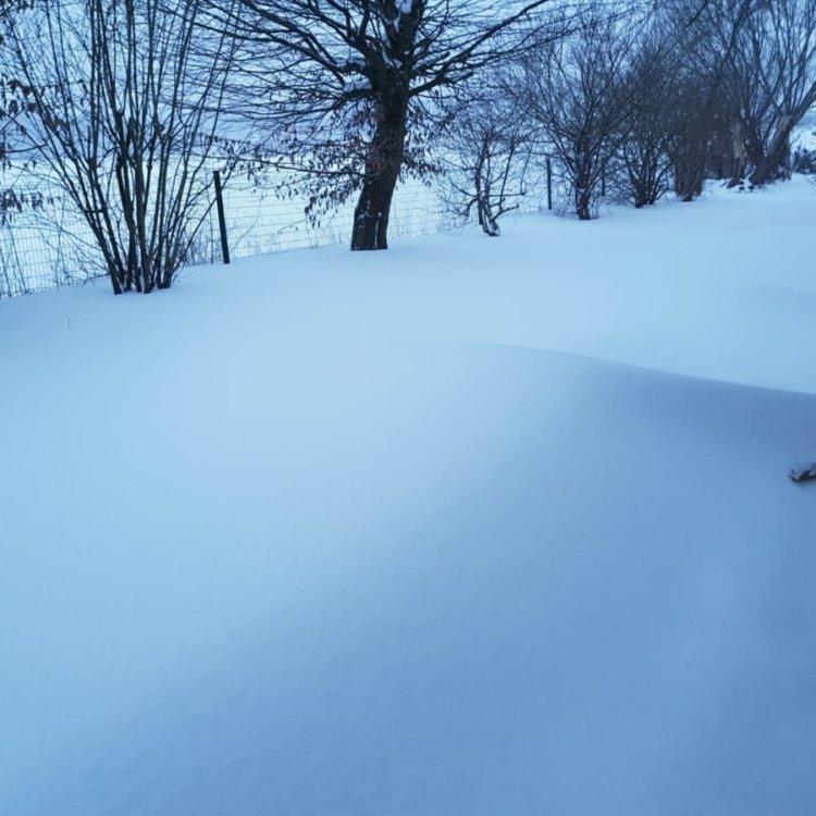 Kita-Bissendorf-Winterwonderland-Foto2